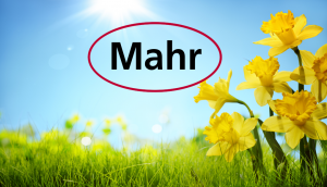Mahr Spring